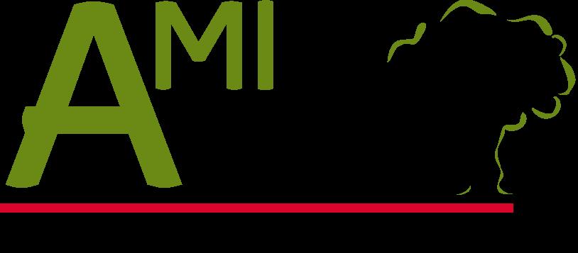 Ami Bois